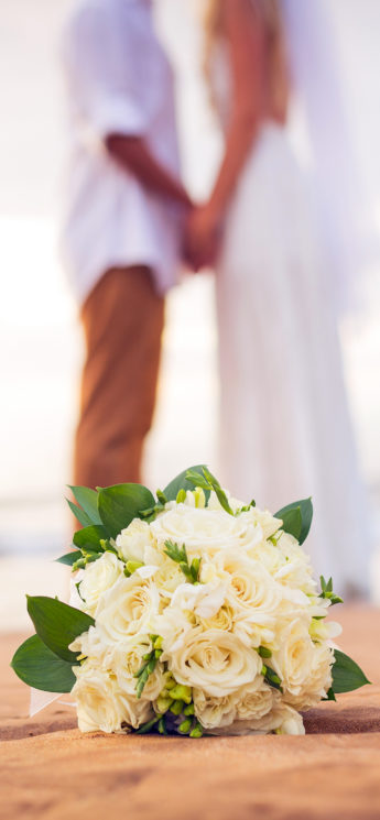 Wedding-couple-3Wallpapers-iPhone-Parallax